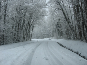 hiver_chemin