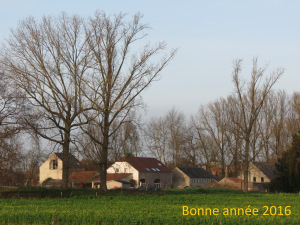 IMG_3128_voaux